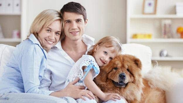 Wills & Trusts dog-young-family Direct Wills Mitcham